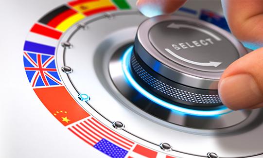 Selección idioma Sistemas traducción instantánea